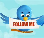 фолловеры в Twitter
